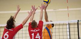 61:Voleibol