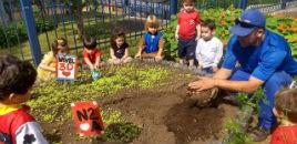 4037:Crianças do Nível 2D aprendem a cuidar da Horta