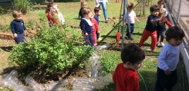 4007:Tarde de diversão no Pátio da Educação Infantil
