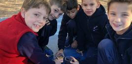 4405:Estudantes do 2º ano aprendem sobre germinação