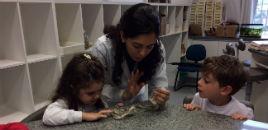 4679:Crianças do Nível 3C aprendem sobre tartarugas e cobras