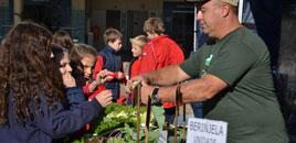 2645 - Consci�ncia ambiental nas atividades da V Feira Verde