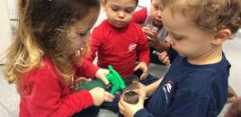 4719:Crianças do Nível 2C têm aula no Laboratório de Biologia