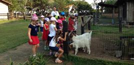 2544 - Turmas do 1� ano conhecem a Quinta da Est�ncia Grande