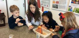 4443:Crianças do N5A têm aula com estudantes do 6º ano
