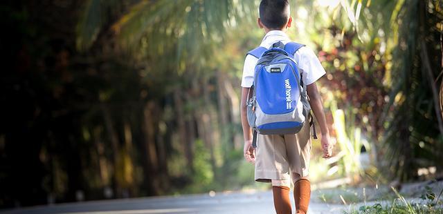 1169:Aprendizagem e bem-estar na escola não são contraditórios