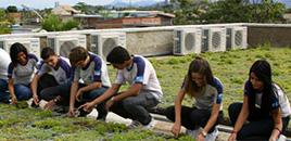 1127:Escola pública do Rio tem telhado verde e práticas sustentáveis