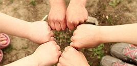 1233:Como implementar a cultura de participação na escola